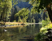 CPRE raises concerns regarding Nitrate & Phosphate pollution of rivers