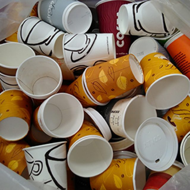 Wimborne Leads the Way to Ditching Disposables