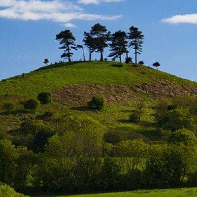 Sustainable Dorset