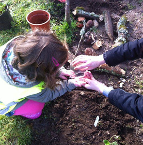 Slades Farm Community Garden – ON HOLD