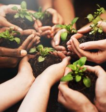 Discover easy steps to greener living